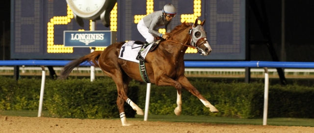 california-chrome