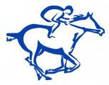 HORSETURFPRO