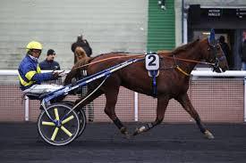 ENO DE NARMONT - La fiche CANALTURF du cheval, performances pmu, pédigré,  évolution de la cote en direct, résultats rapports, courses 2021